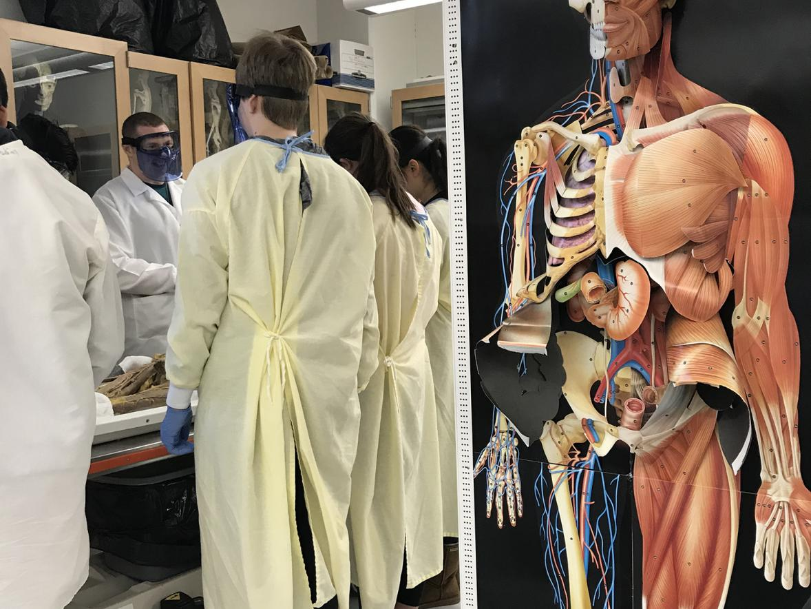Students from Colfax examine one of the two cadavers at UW-Stout.